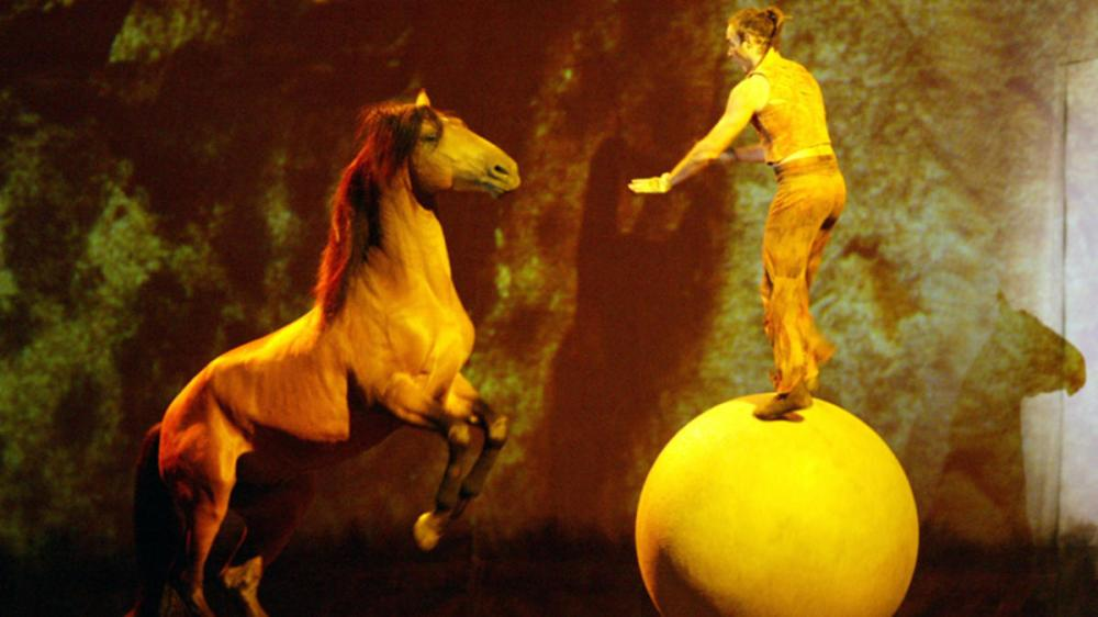 cirque horses